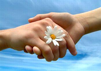 XXIVº Domingo do Tempo Comum -O Perdão, como caminho da Paz