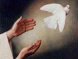 """Ano Novo de Paz - """"A construção da paz só é possível quando fizermos nossa parte"""""""