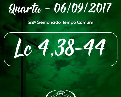 22ª Semana do Tempo Comum- 06/09/2017 (Lc 4,38-44)