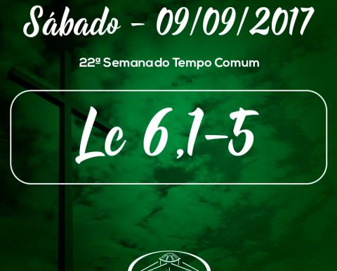 22ª Semana do Tempo Comum- 09/09/2017 (Lc 6,1-5)