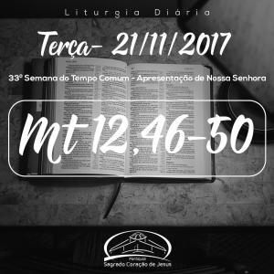 33ª Semana do Tempo Comum - Apresentação de Nossa Senhora 21/11/2017 (Mt 12,46-50)