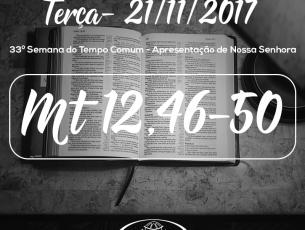 33ª Semana do Tempo Comum – Apresentação de Nossa Senhora 21/11/2017 (Mt 12,46-50)