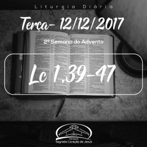 2ª Semana do Advento- 12/12/2017 (Lc 1,39-47)