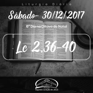 6º Dia na Oitava do Natal- 30/12/2017 (Lc 2,36-40)