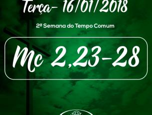 2ª Semana do Tempo Comum- 16/01/2018 (Mc 2,23-28)