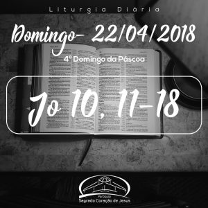 4º Domingo da Páscoa- 22/04/2018 (Jo 10,11-18)
