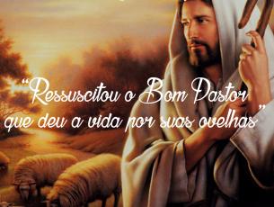 Ressuscitou o Bom Pastor que deu a vida por suas ovelhas- Homilia do 4º domingo da Páscoa