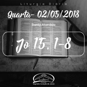 Santo Atanásio- 02/05/2018 (Jo 15,1-8)