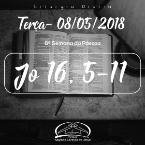 6ª Semana da Páscoa- 08/05/2018 (Jo 16,5-11)