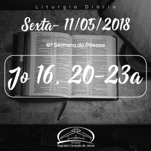 6ª Semana da Páscoa- 11/05/2018 (Jo 16,20-23a)