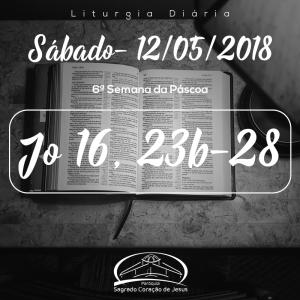 6ª Semana da Páscoa- 12/05/2018 (Jo 16,23b-28)