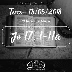 7ª Semana da Páscoa- 15/05/2018 (Jo 17,1-11a)
