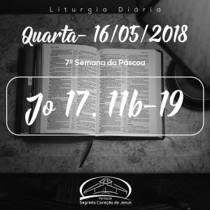 7ª Semana da Páscoa- 16/05/2018 (Jo 17,11b-19)