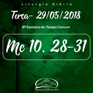 8ª Semana do Tempo Comum- 29/05/2018 (Mc 10,28-31)