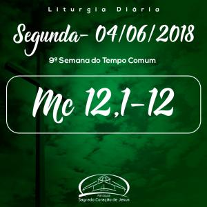 9ª Semana do Tempo Comum- 04/06/2018 (Mc 12,1-12)