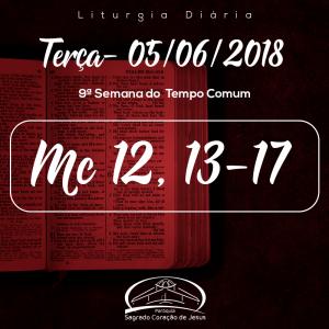9ª Semana do Tempo Comum- 05/06/2018- (Mc 12,13-17)