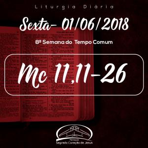 8ª Semana do Tempo Comum- 01/06/2018 (Mc 11,11-26)