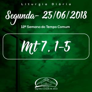 12ª Semana do Tempo Comum- 25/06/2018 (Mt 7,1-5)