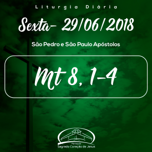 12ª Semana do Tempo Comum- 29/06/2018 (Mt 8,1-4)