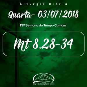 13ª Semana Comum- 04/07/2018- (Mt 8,28-34)