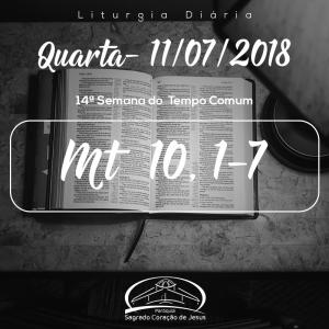 14ª Semana do Tempo Comum- 11/07/2018 (Mt 10,1-7)