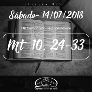 14ª Semana do Tempo Comum- 14/07/2018 (Mt 10,24-33)