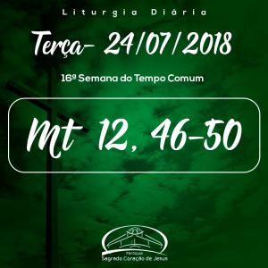 16ª Semana do Tempo Comum- 24/07/2018  (Mt 12,46-50)