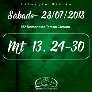 16ª Semana do Tempo Comum- 28/07/2018 (Mt 13,24-30)