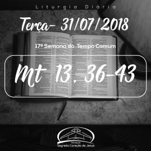17ª Semana do Tempo Comum- 31/07/2018 (Mt 13,36-43)