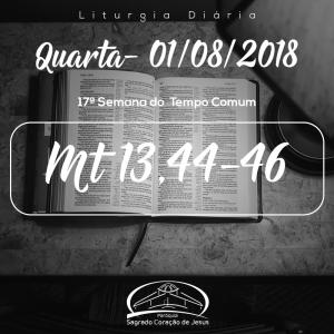 17ª Semana do Tempo Comum- 01/08/2018 (Mt 13,44-46)