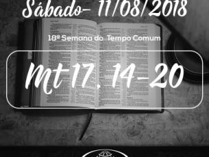 18ª Semana do Tempo Comum- 11/08/2018 (Mt 17,14-20)
