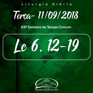 23ª Semana do Tempo Comum- 11/09/2018 (Lc 6,12-19)