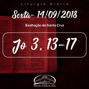 Exaltação da Santa Cruz- 14/09/2018  (Jo 3,13-17)