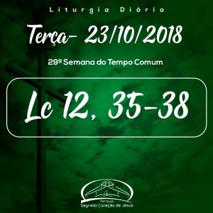 29ª Semana do Tempo Comum- 23/10/2018 Lc 12,35-38)