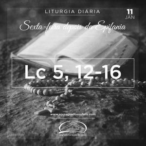 Sexta-feira depois da Epifania- 11/01/2019 (Lc 5,12-16)