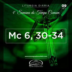 4ª Semana do Tempo Comum- 09/02/2019 (Mc 6,30-34)
