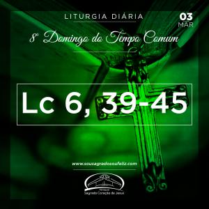 8º Domingo do Tempo Comum- 03/03/2019 (Lc 6,39-45)