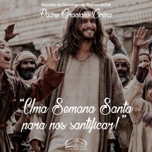 Uma Semana Santa para nos santificar- Homilia do Domingo de Ramos 2019- Pe Graciano