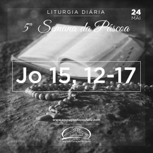 5ª Semana da Páscoa - Sexta-feira 24/05/2019 (Jo 15,12-17)