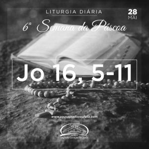 6ª Semana da Páscoa - Terça-feira- 28/05/2019 (Jo 16,5-11)