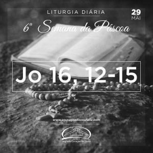 6ª Semana da Páscoa - Quarta-feira- 29/05/2019 (Jo 16,12-15)