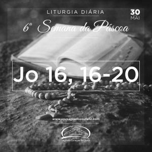 6ª Semana da Páscoa - Quinta-feira- 30/05/2019 (Jo 16,16-20)