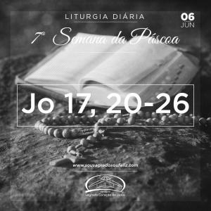 7ª Semana da Páscoa - Quinta-feira 06/06/2019 (Jo 17,20-26)