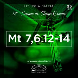12ª Semana do Tempo Comum - Terça-feira- 25/06/2019 (Mt 7,6.12-14)