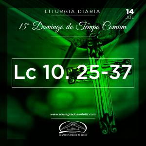 14ª Semana do Tempo Comum - Sexta-feira- 14/07/2019 (Mt 10,16-23)