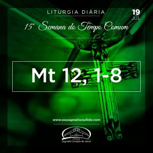 15ª Semana do Tempo Comum - Sexta-feira- 19/07/2019 (Mt 12,1-8)