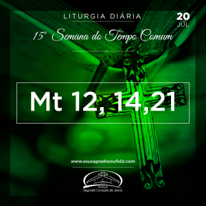 15ª Semana do Tempo Comum - Sábado 20/07/2019 (Mt 12,14-21)