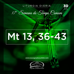 17ª Semana do Tempo Comum - Terça-feira- 30/07/2019 (Mt 13,36-43)