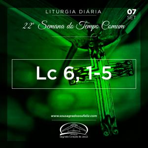 22ª Semana do Tempo Comum - Sábado- 07/09/2019 (Lc 6,1-5)
