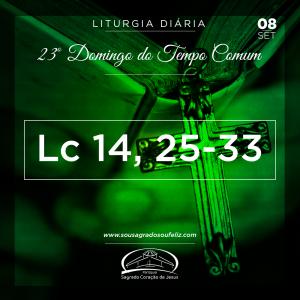23º Domingo do Tempo Comum- 08/09/2019 (Lc 14,25-33)